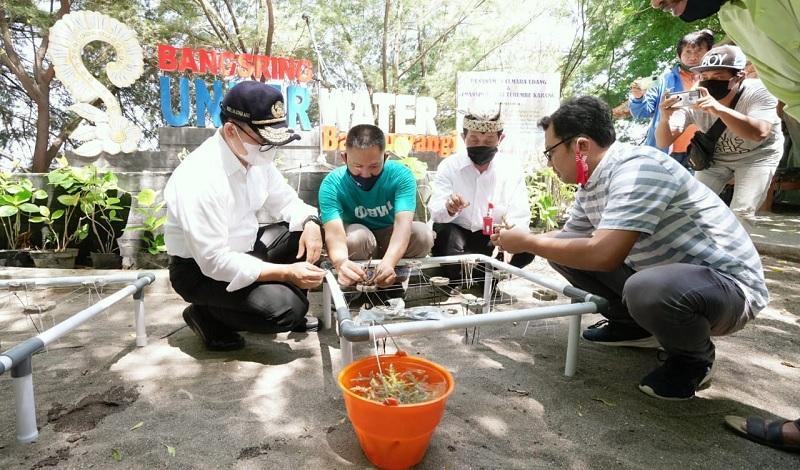 Bupati Anas Ajak Tanam Cemara Udang di Bangsring