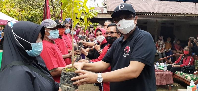 HUT Megawati, Djarot Pimpin Banteng Sumut Tanam 74.000 Pohon