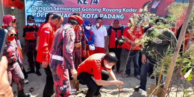 HUT PDI Perjuangan, Banteng Padang Tanam Ratusan Pohon