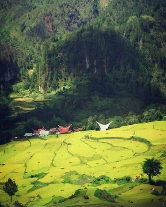 GANTI & Banteng Toraja Utara Periksa Hilangnya Pupuk Subsidi