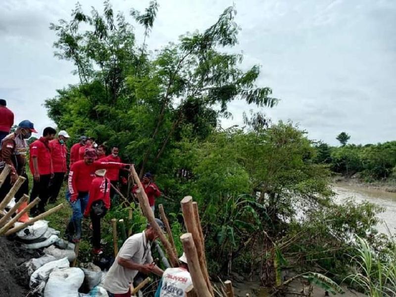 Keren! Banteng Brebes Tangani Tanggul Jebol Sungai Pemali!