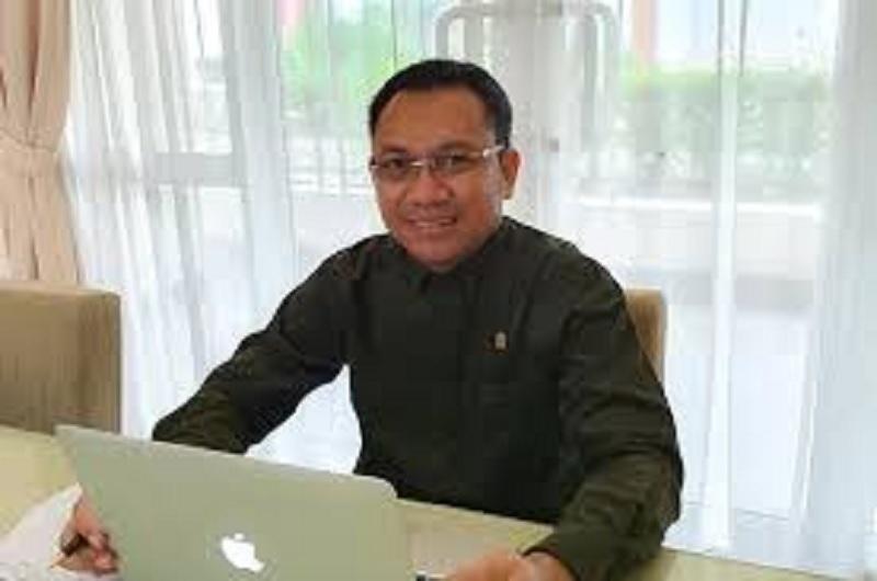 Soal Food Estate, Ansy: Berterima Kasih-lah Pada Jokowi