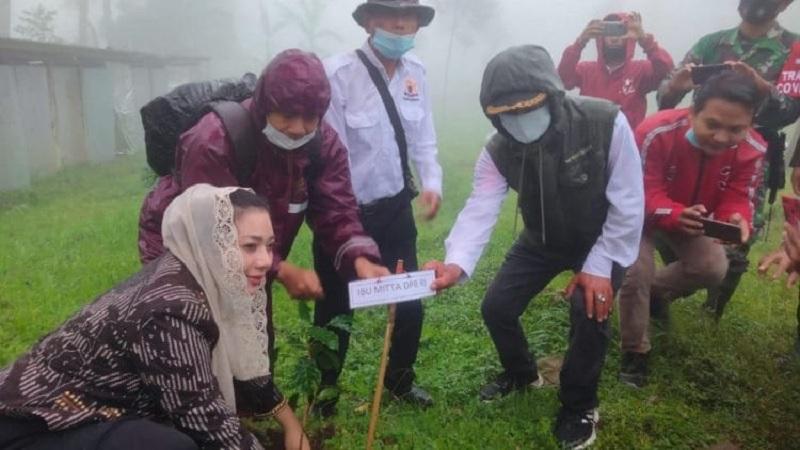 KADIN & Banteng Brebes Tanam Ribuan Kopi di Pandansari
