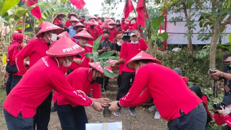 Keren! Banteng Jateng Hijaukan Bantaran Sungai Bengawan Solo