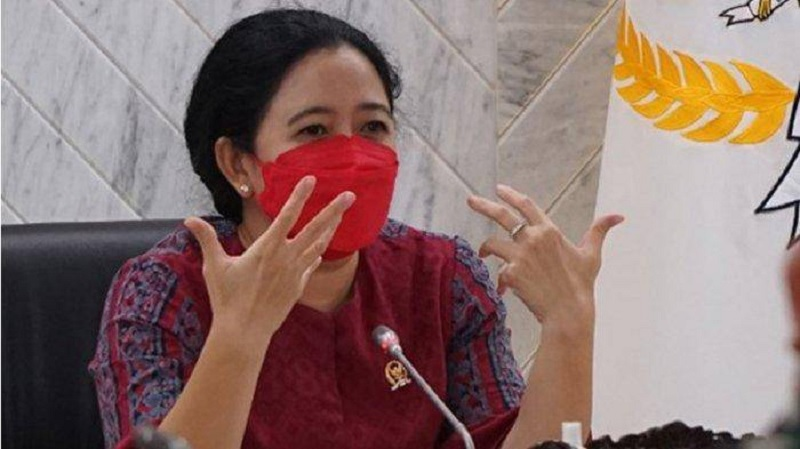 Puan Maharani Capres 2024, Djarot: Hak Prerogatif Megawati