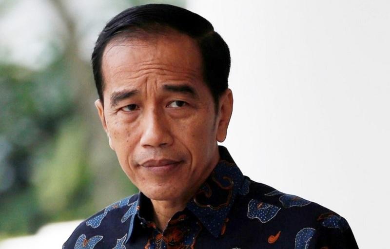Ejekan Habib Rizieq, Ruhut: Jokowi Menyelamatkan Indonesia
