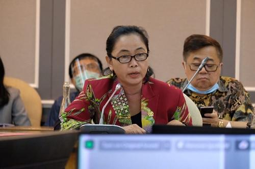 PDI Perjuangan Perjuangkan Afirmasi Politik untuk OAP