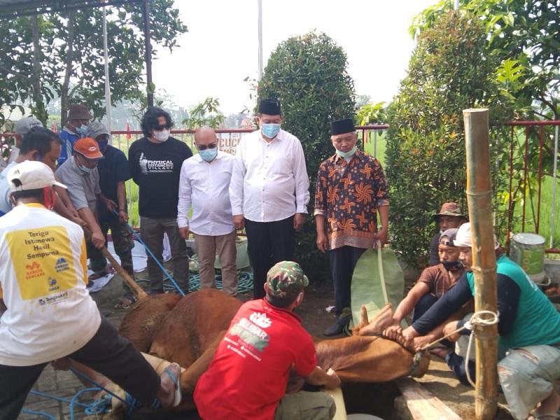 Banteng Malang Distribusikan Kurban dari Ketua DPP & Bupati