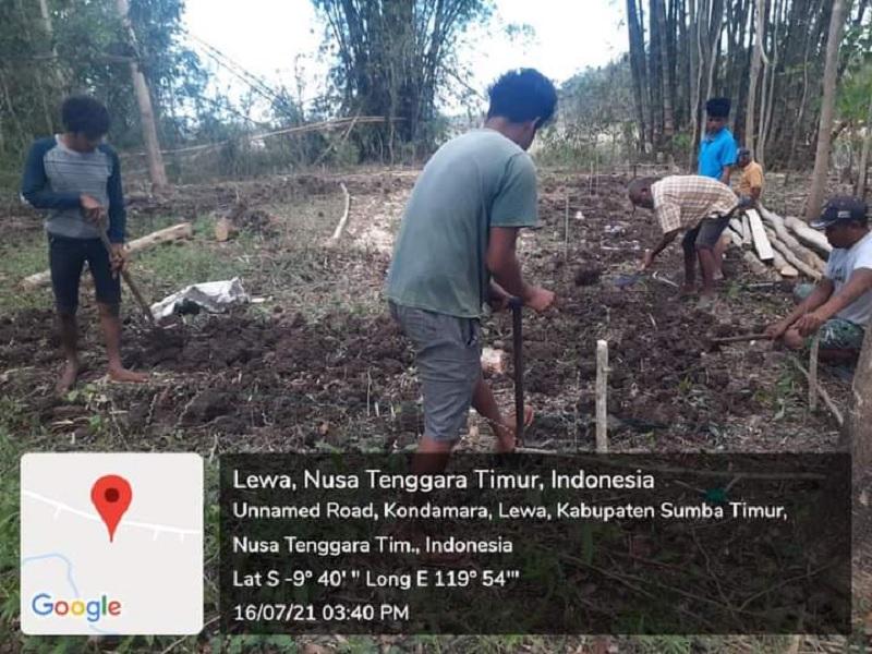 Berkat Ansy, Petani Sumba Timur Bangun Rumah Kompos