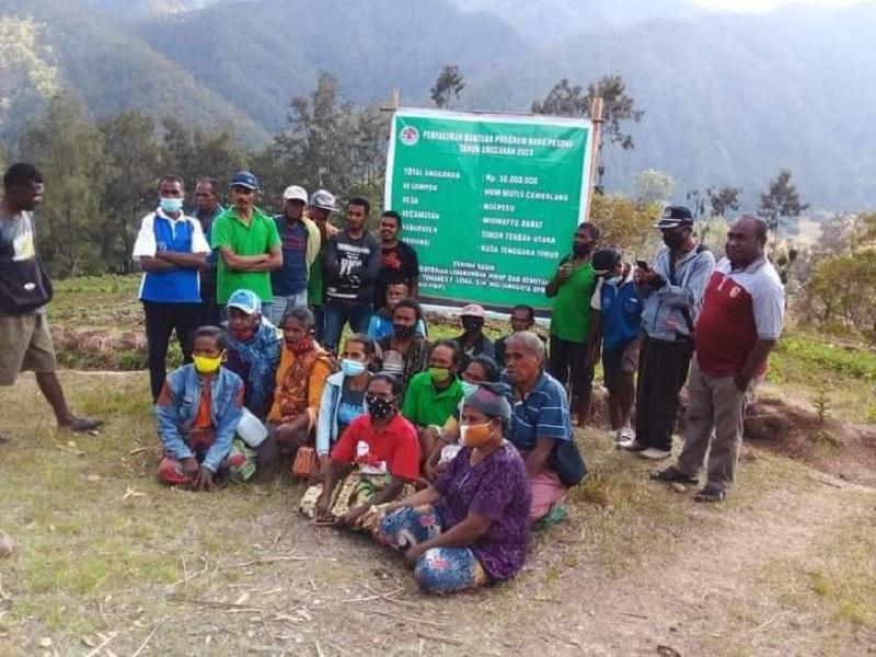 Dibantu Ansy, Kelompok Tani TTU Terima Bang Pesona